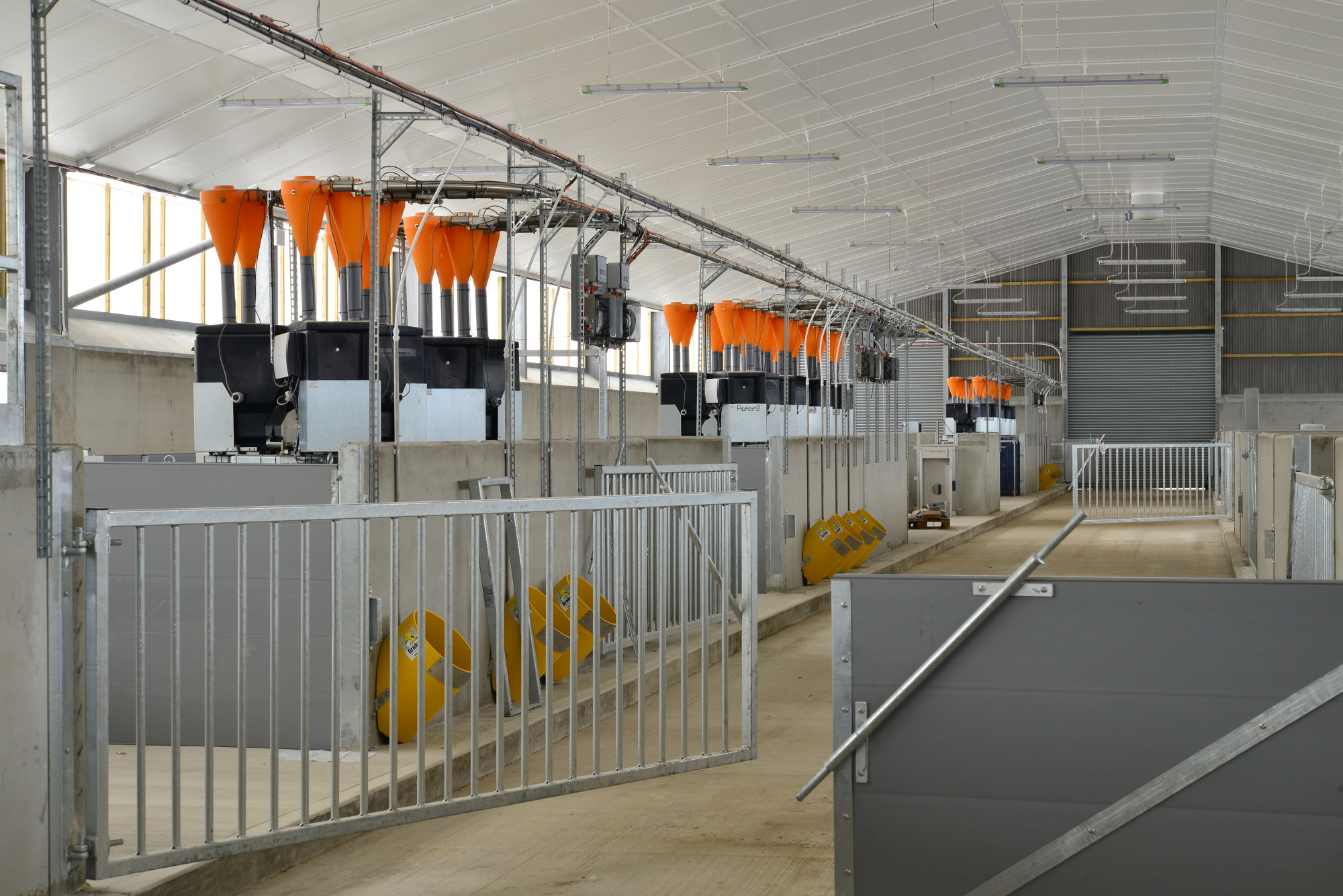 indoor pig facility