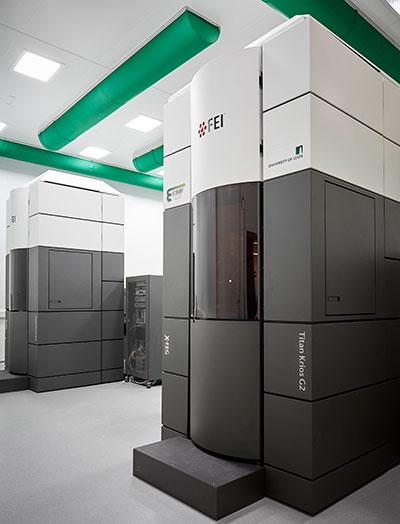 FEI Titan Krios microscopes