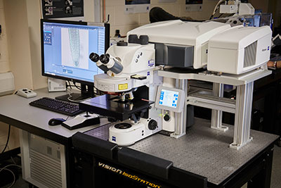 Zeiss LSM880 + Airyscan