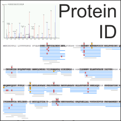 Protein Identification with Mass Spectrometry