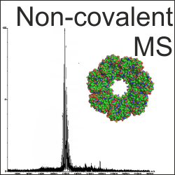 Non-covalent mass analysis
