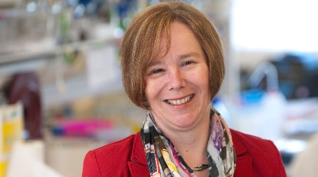Prof Sheena Radford announced as 2018 Biophysical Society Fellow