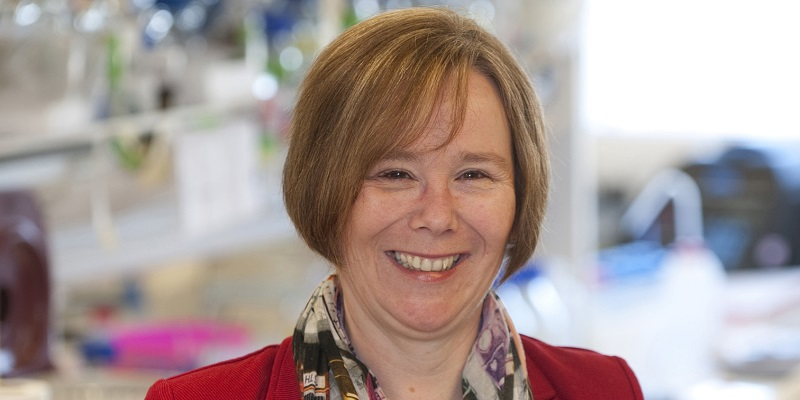 Biological Sciences professor recognised in Queen's Birthday Honours