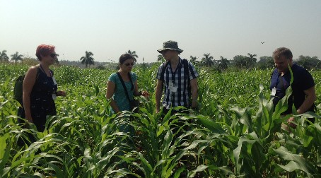 Prof. Alison Baker awarded 4 year India partnering award by the BBSRC