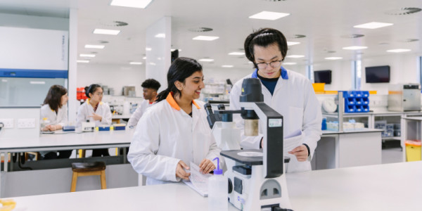 Undergraduate Students working in lab